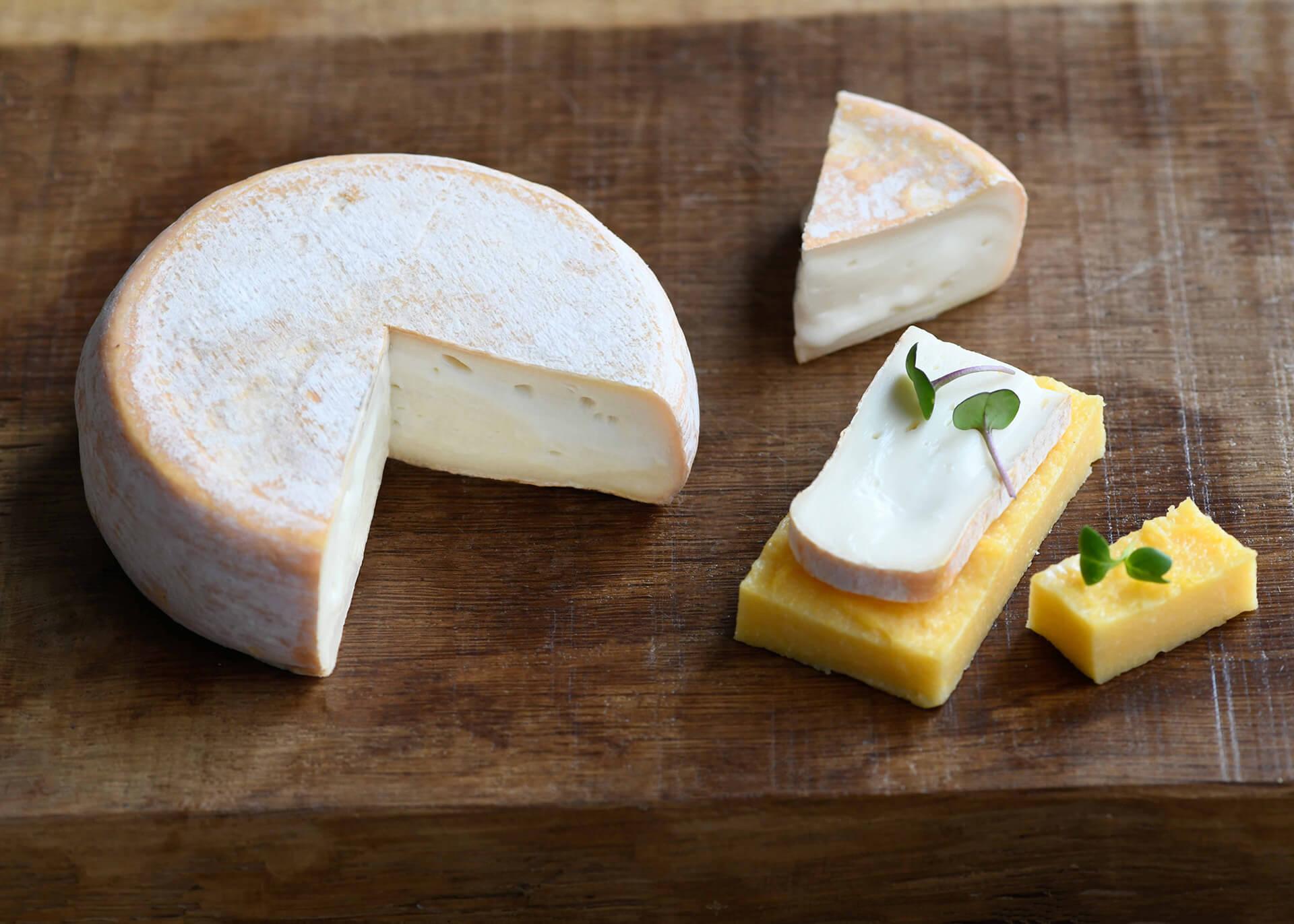 Image de la newsletter du fromage Chevrotin AOP