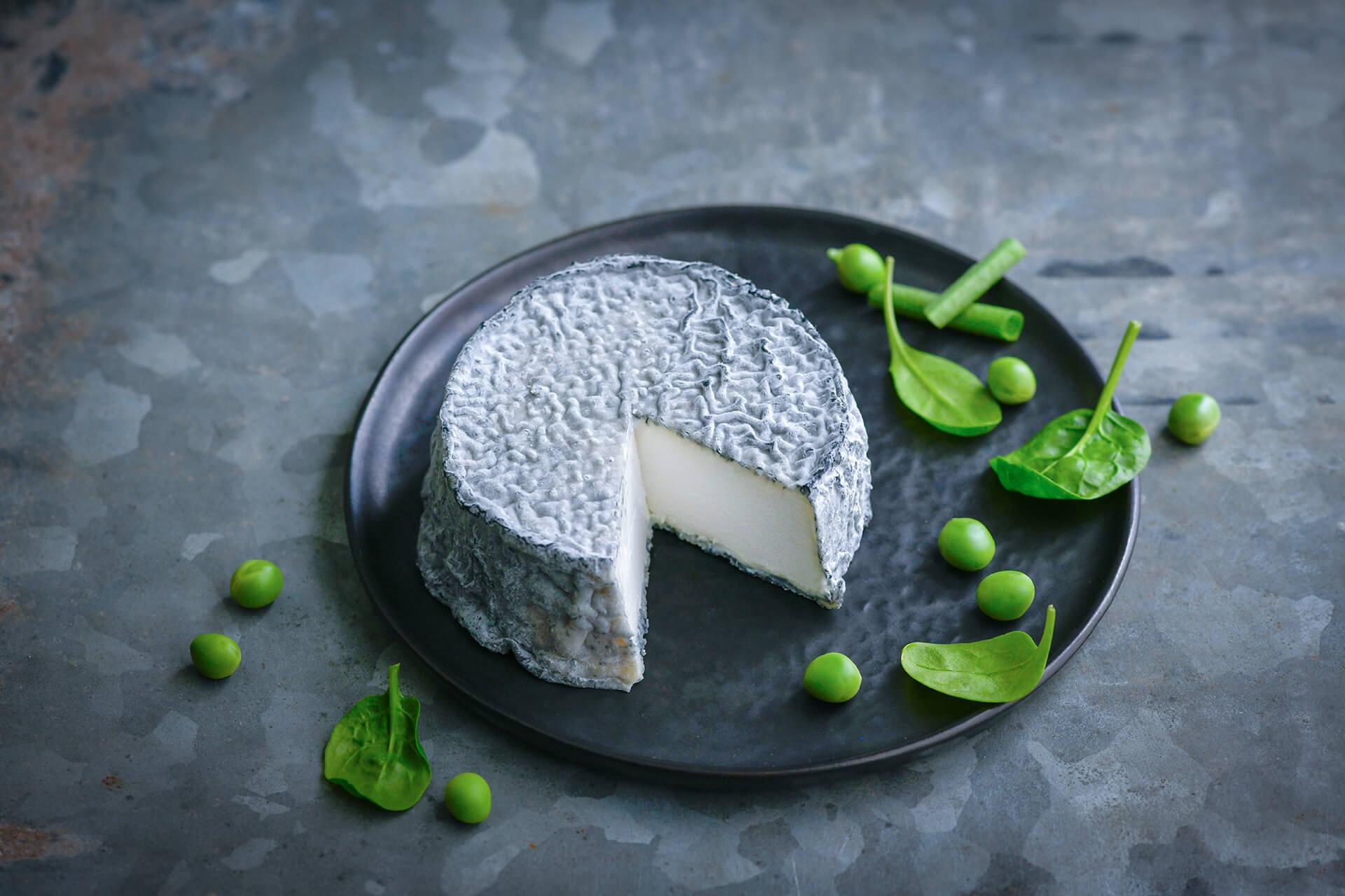 Image du fromage  Selles-sur-cher AOP